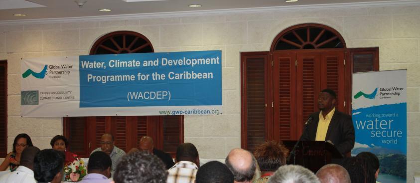WACDEP Launch 2013